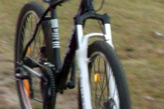 Index bike 50